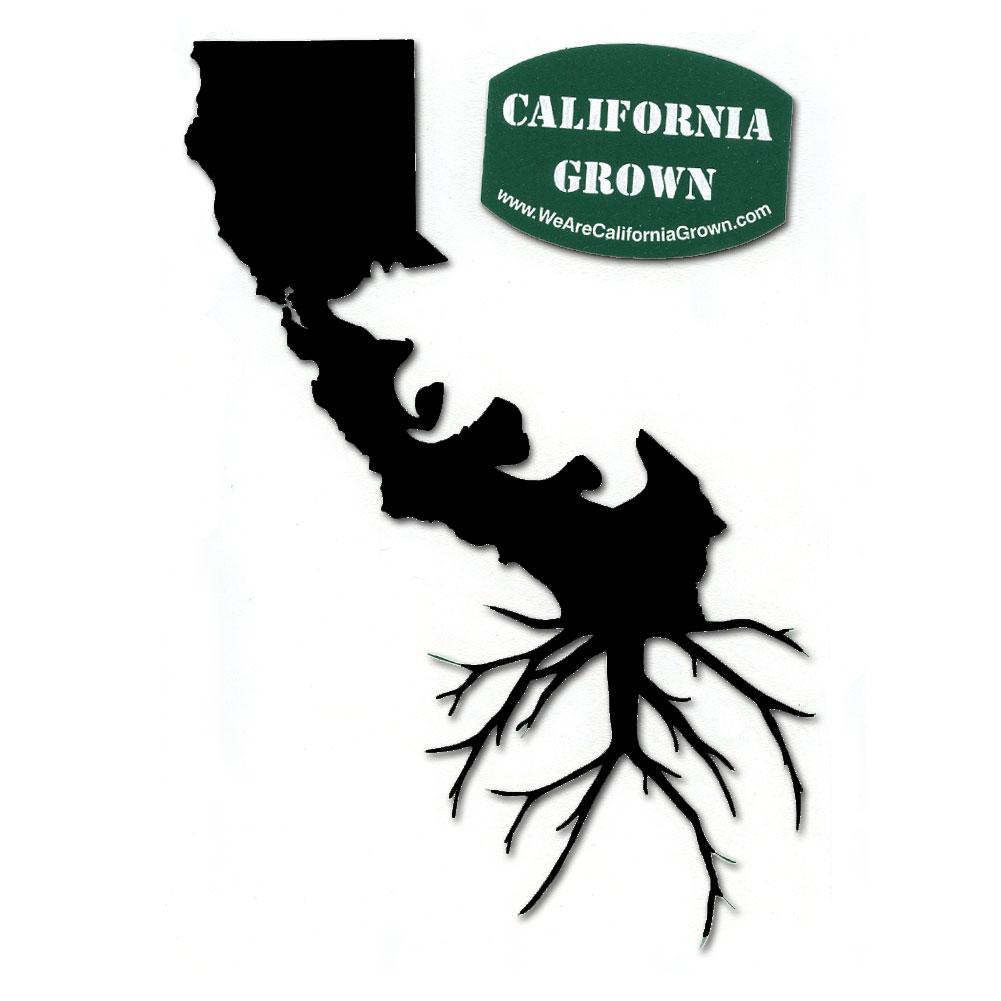 A401 California Grown Ca State Bear Ca Roots Vinyl Cutout