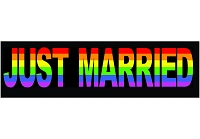 CS161 - Just Married Full Color Sticker