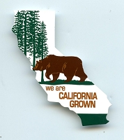 CS170-S - California Grown Bear Mini Color Sticker