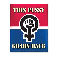 CM085 This Pussy Grabs Back Women's March Protest Rally Sign Mini Sticker Decal