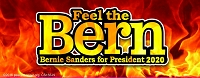 CS155-N - Feel The Bern Color Sticker