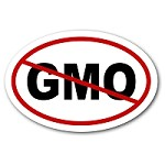 OS028 - NO GMO Oval Bumper Sticker