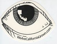 A415 - We are California Grown Lg Eyeball with State and Bear in Pupil Art Decal Window Sticker